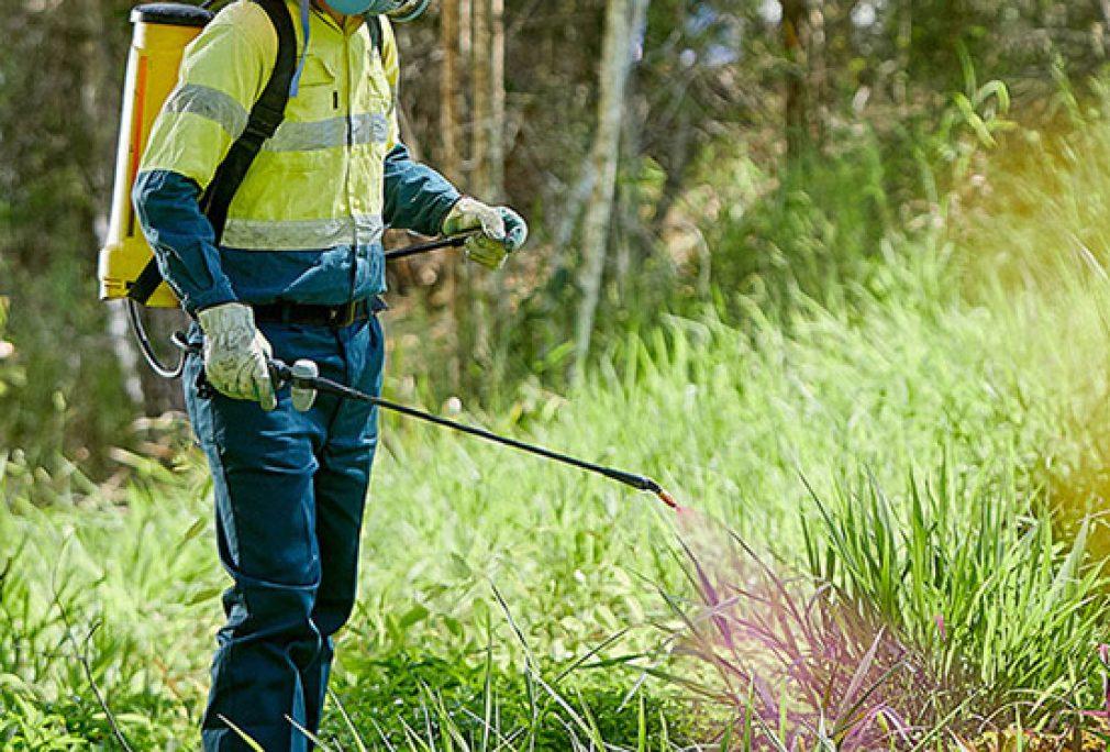 Herbicide Spraying on State Roads in Western Downs Region