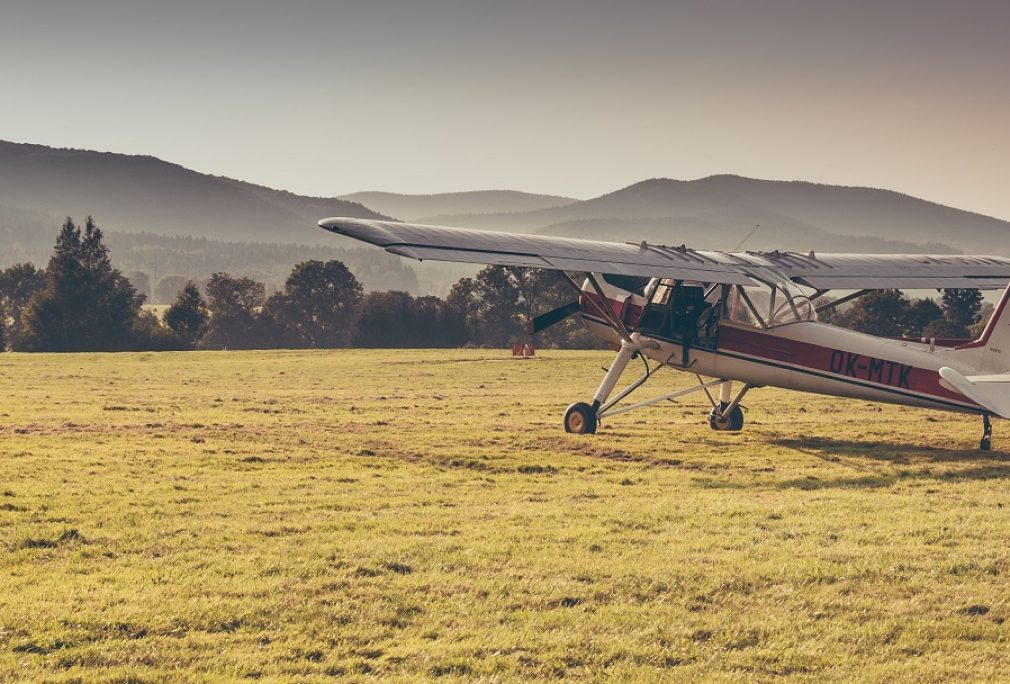 Toowoomba Aerodrome Hare Control