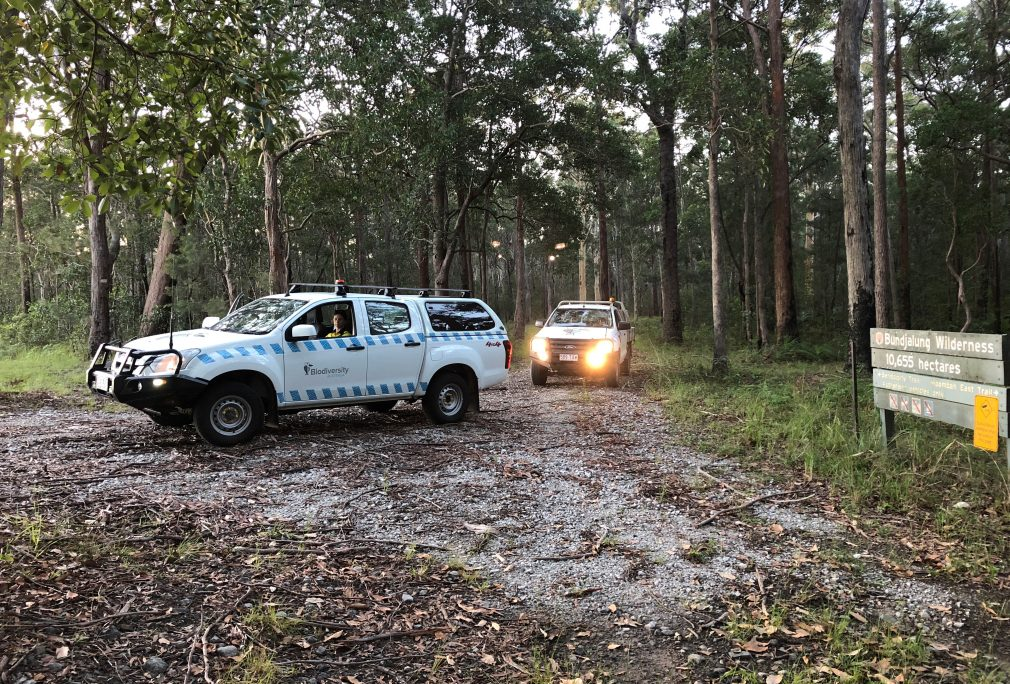 NSW Koala Likelihood Map Update Field Survey Program